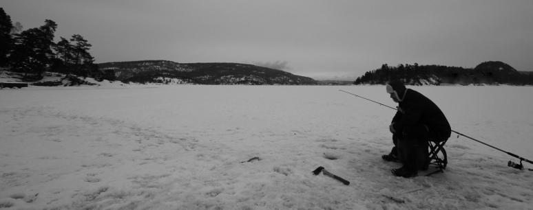 Foto; Bjørn Heidenstrøm, Vestfjorden
